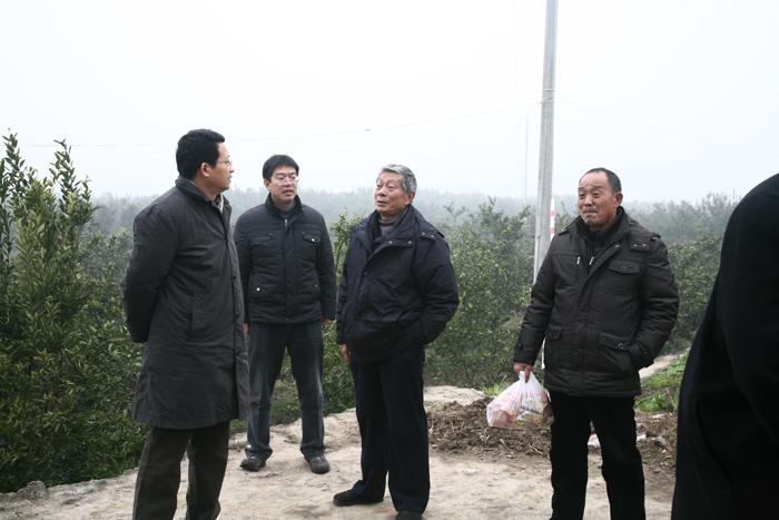 廠長蘭金堂星轰击、黨委書記徐萍和領導班子成員就從總部趕到基地給堅守工作崗位的職工拜年